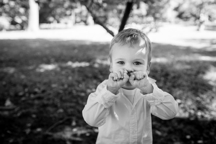 best family photographers new york city