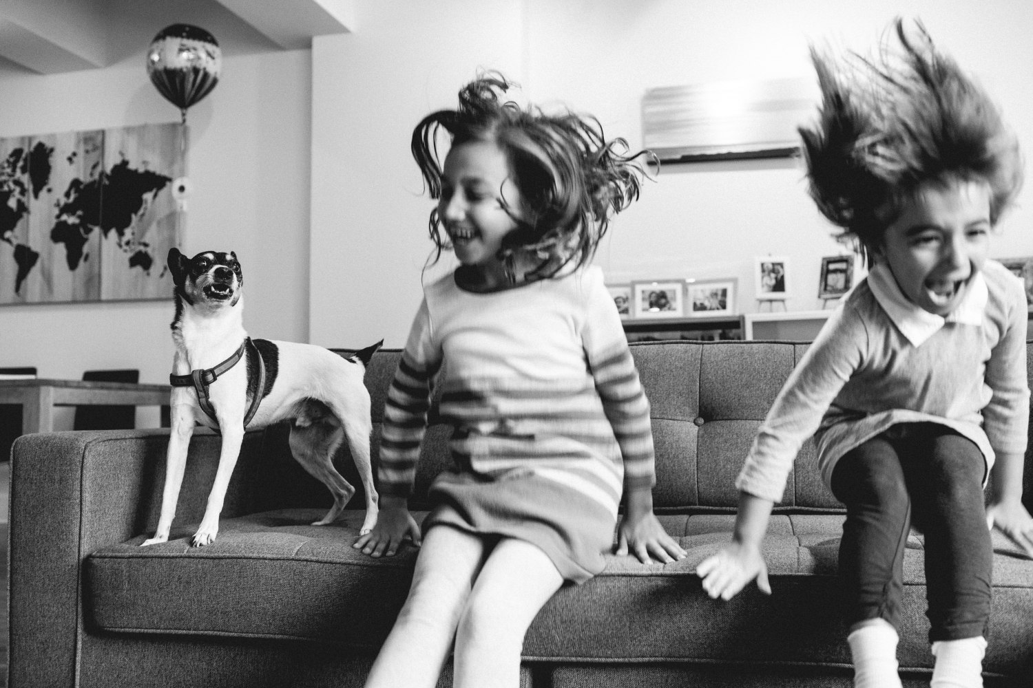 Black and white photo of two sisters and dog jumping off of the couch Tribeca